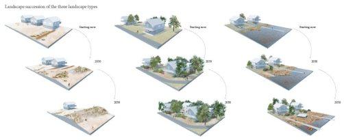 Landscape succession